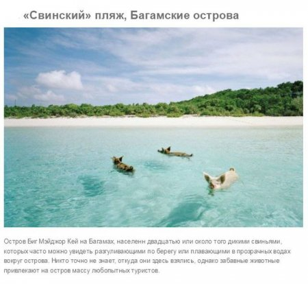 свинский пляж