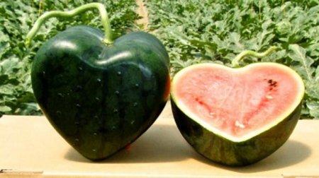 японские овощи и фрукты