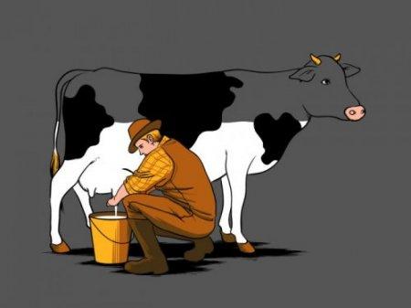 иллюстрации Чоу Хон Лама картинка 23