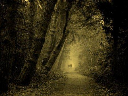 одинокие прохожие в парке