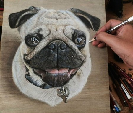 нарисованная собака