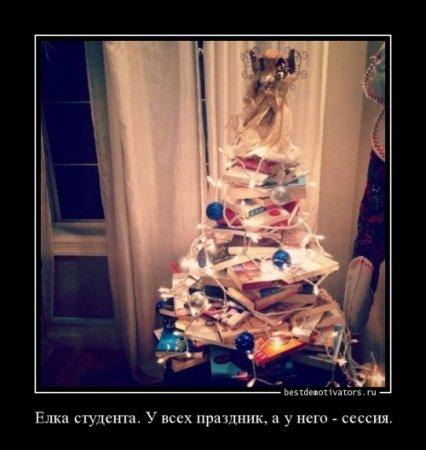 елка студента