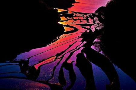 розовый закат на полях