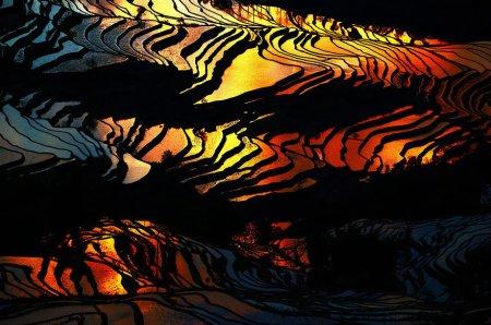 тигриный окрас