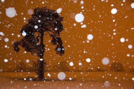 снег в пустыне