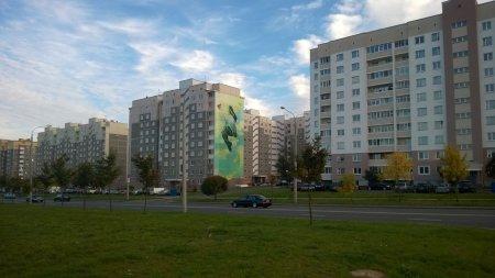 зеленый орнамент