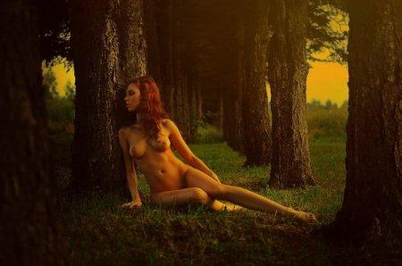 дева в лесу
