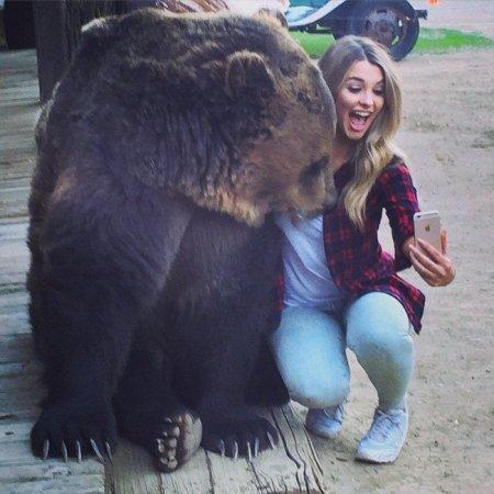 селфи с медведем