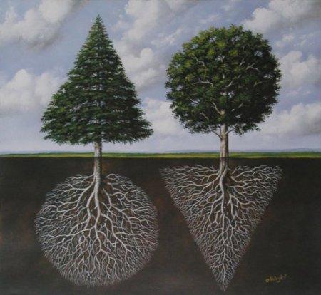 корень и крона