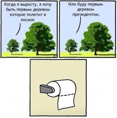 дерево призидент