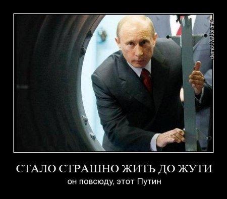 повсюду Путин