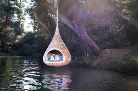 гнездо над водой
