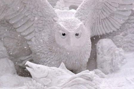 снежный филин