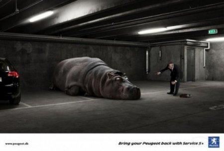 Peugeot не ленивое животное!