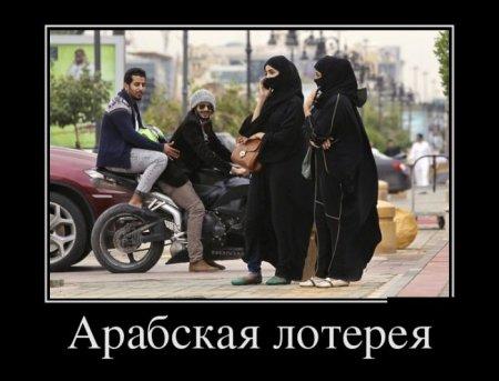 арабская лотерея