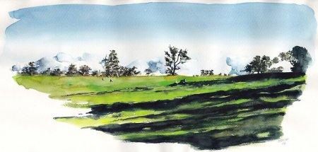 поляна с деревьями