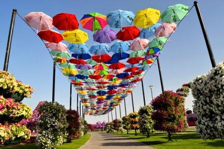 аллея из зонтов