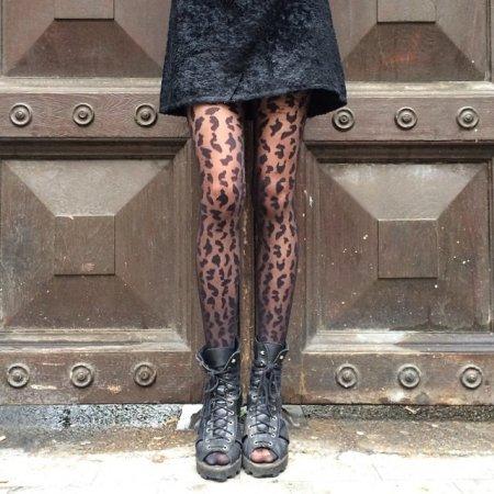 ноги леопарда