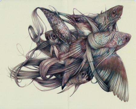Птица с рыбами