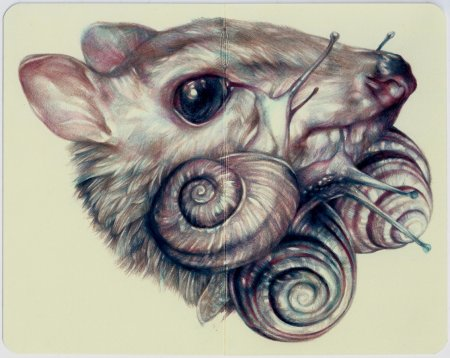 Мышь с улитками