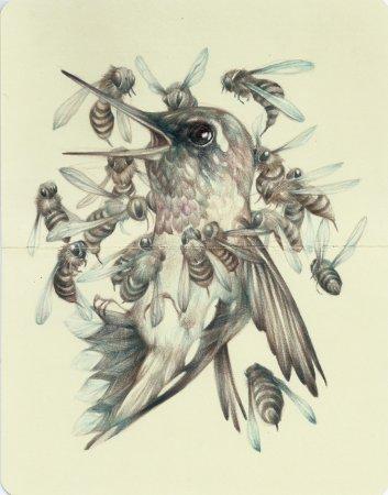 Птица и осы