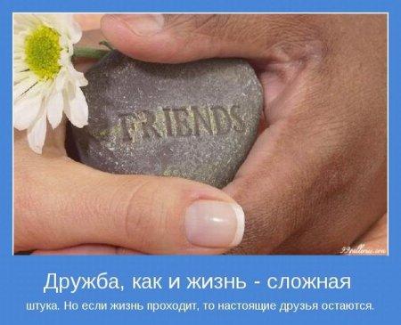 Дружба сложная