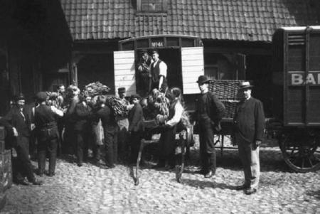 В Норвегию прибыла первая в истории партия бананов. 1905 год.