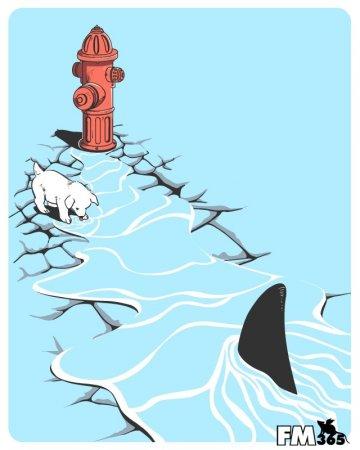 Акула ближе, чем ты думаешь