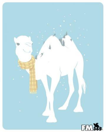 Зимний верблюд