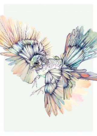 птичка в полете