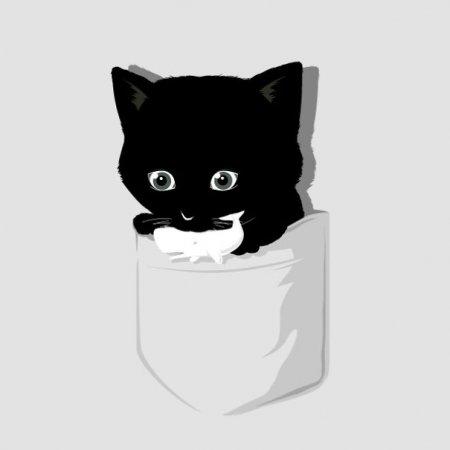 Карманный кот