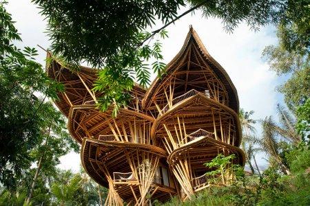 бамбуковый дворец