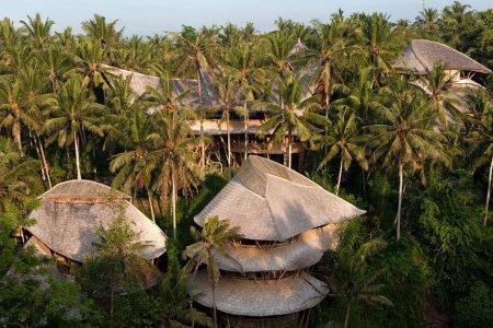 бамбуковый городок