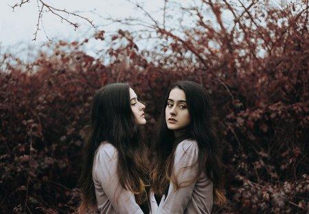 фото близняшек