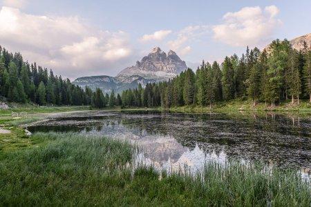 заросшее озеро