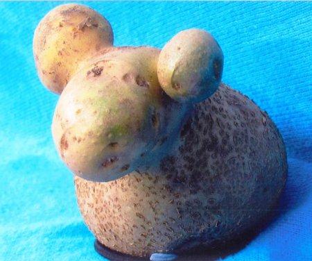 Барашка из картошки