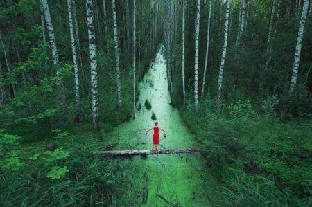 В бескрайних лесах, Россия