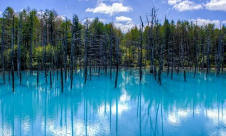 Голубой пруд, Хоккайдо, Япония