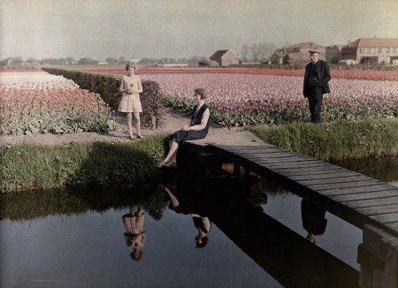 Местные жители отдыхают возле тюльпановых полей, расположенных вдоль канала в Харлеме, Нидерланды, 1931 год