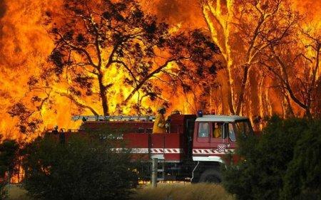 Лесной пожар – Виктория, Австралия (февраль 2009)
