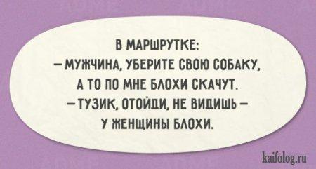 блохи