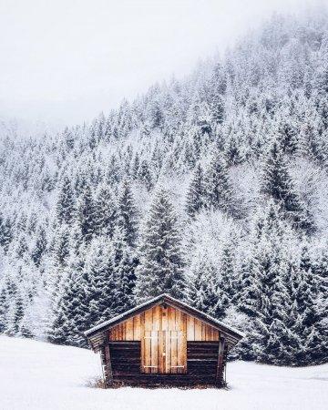 Холодное утро в Баварии