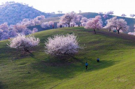 красивый пейзаж