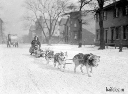 Обычный Чикаго в 1904-ом году.