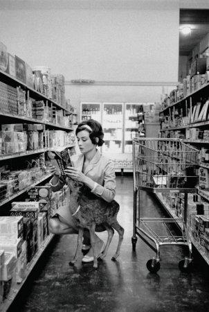 Одри Хепберн и ее олененок, 1958.